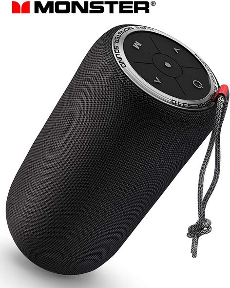 Speaker s310